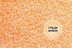 TOHO TR-08-904 Ceylon Apricot 100g